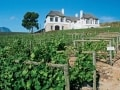 Bouchard Finlayson Winery, Hermanus Cycling Holiday
