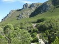 Hermanus Walk,Fernkloof Nature reserve hiking trail