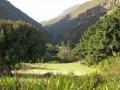 harold porter botanical garden, betty's bay