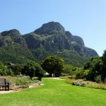 Kirstenbosch View from the Botanical Gardens, Cape Town