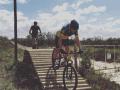 Whale Coast Cycling-Sijnn Wines