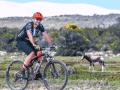 Whale-Coast-Cycling