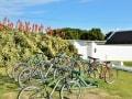Whale Coast Cycling-De Hoop