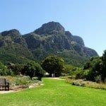 Kirstenbosch View from the Botanical Gardens, Cape Town