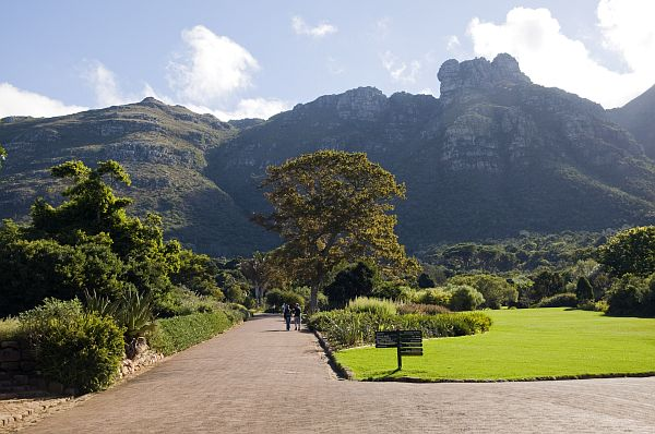 Guided Hikes Cape Town