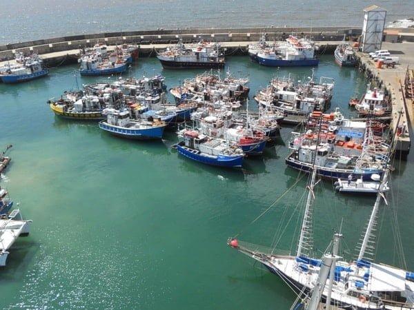 End your walk at Port St Francis calamari harbour