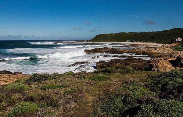 Walk along coastal fynbos on St Francis Coast