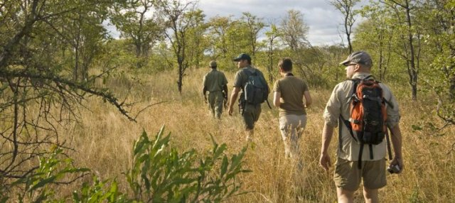 Wildlife on foot- Kruger Wilderness trails