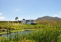 Hermanus cycling holiday includes visits to wine estates