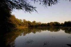 Unspoilt private nature reserve