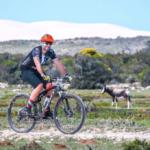 Whale Coast Cycling3