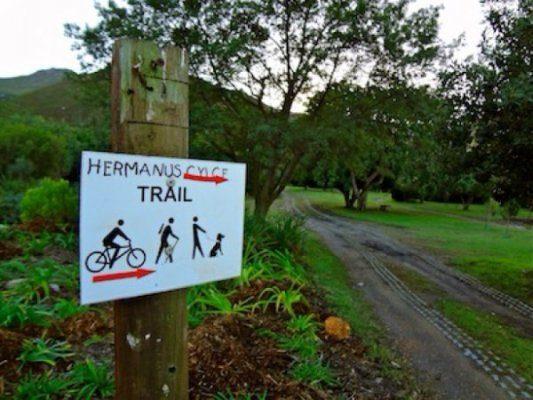 Hermanus Cycling Holiday