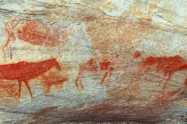 Ancient rock paintings- Truitjieskraal Cederberg hike