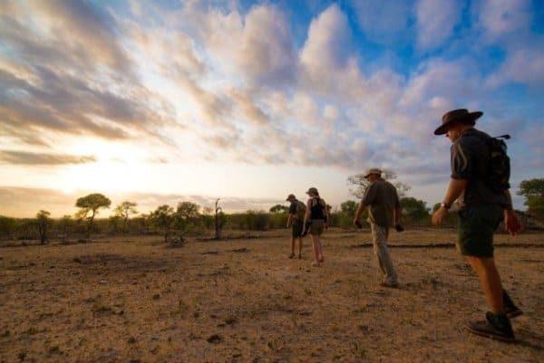 Exploring Kruger wildlife with ranger on Wilderness Trails