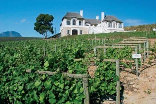 Wine tasting at estates along Hermanus Cycling route